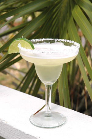 low carb margarita recipe
