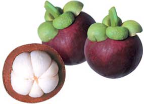 Mangosteen - Super Food