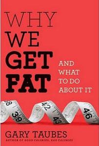 Gary Taubes' 2nd Book