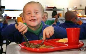 Little boy eating a school lunch