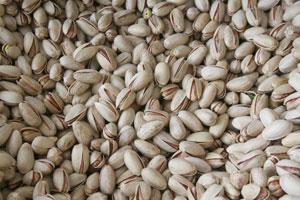 the skinny nut