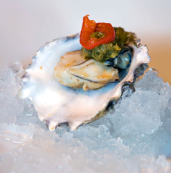 raw oyster on ice