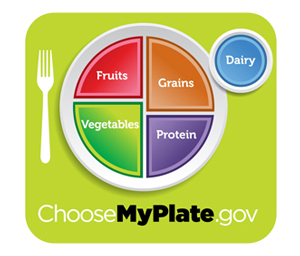 MyPlate Plate Icon