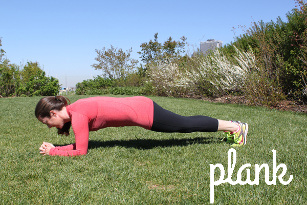 plank hotbird