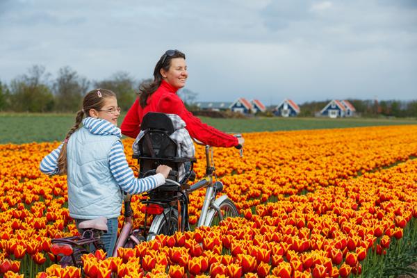 dutch cycle