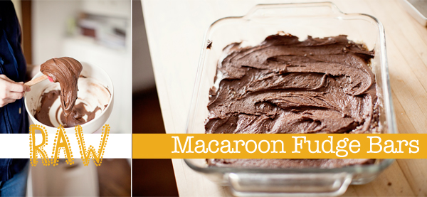 raw macaroon fudge bars