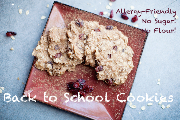 allergy cookies