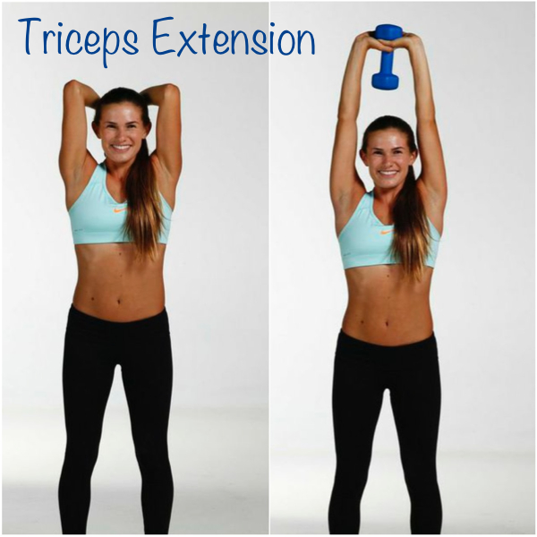 dempsey triceps