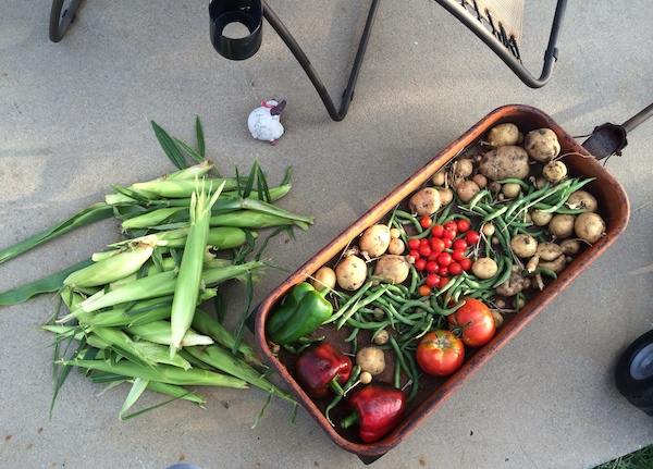 veggies wagon