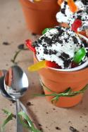 Healthified Dirt n'Worms Sundae Photo