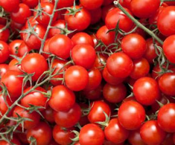 4 Cups Cherry or Grape Tomatoes
