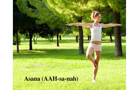 asana  yoga dictionary