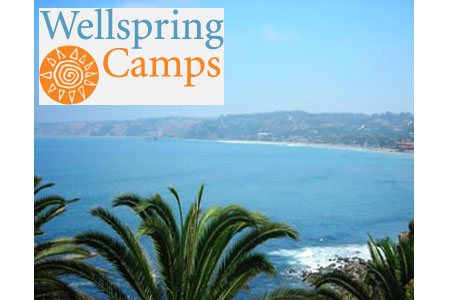 Wellspring Camps