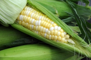 Barbecued Corn Photo