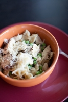 Creamy Parmesan White Wine Sauce with Pasta Photo