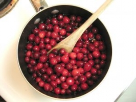 Simple Mashed Cranberries Photo