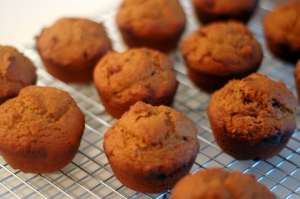 Pumpkin Walnut Snack Muffins Photo