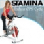 Stamina Indoor Cycle