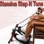 Stamina Step N Tone