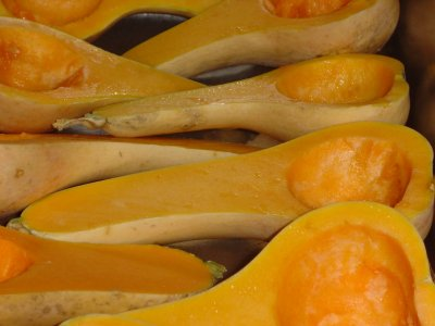 Squash, winter, hubbard, baked, without salt