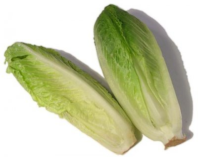 Hearts of Romaine