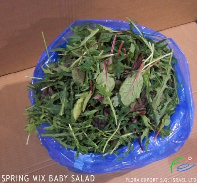 Baby Spring Mix with Herbs