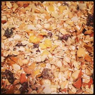 Natural Toasted Oat Bran