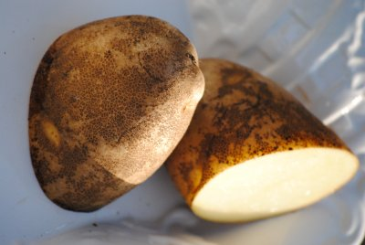 Potatoes, Cut Russet