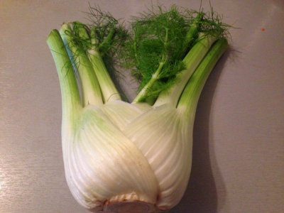 Fennel, bulb, raw