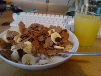 Cereal, Enriched Wheat Bran Flakes