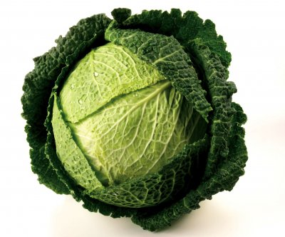 Cabbage, Savoy, Green