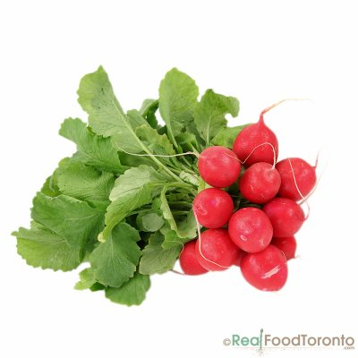 Organic, Radish, Bunched, Red