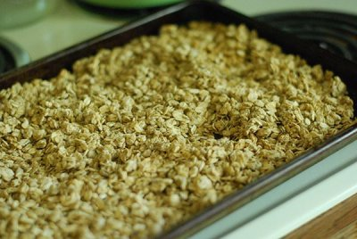 Crunchy Blend With Granola