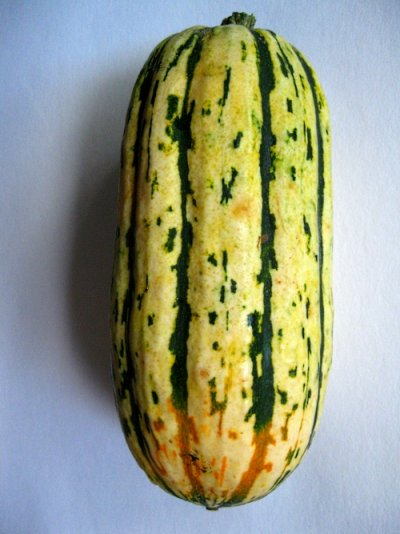 Squash, Delicata / Sweet Potato