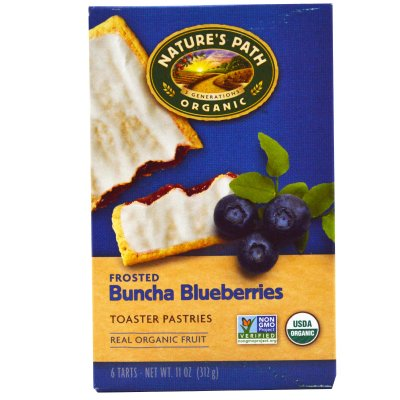 Frosted Toaster Pastries - Blueberries