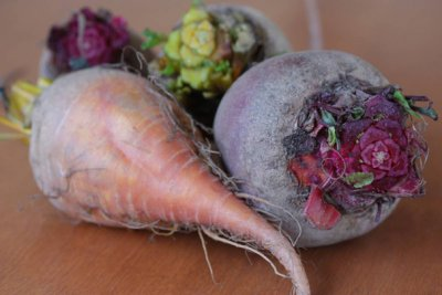 Beets, raw