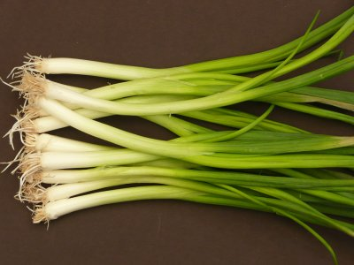 Onion, Green, Scallions / Spring