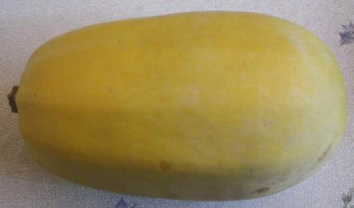 Squash, winter, spaghetti, cooked, boiled, drained, or baked, without salt