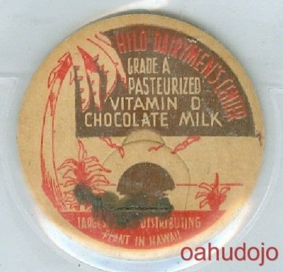 Chocolate Grade A Milk