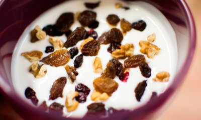 Yogurt, Low-fat, Plain