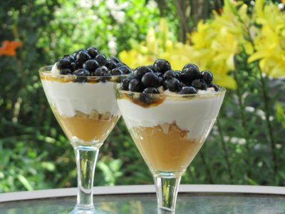 Yogurt, Low-fat, Blueberry