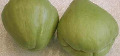 Chayote, fruit, cooked, boiled, drained, without salt