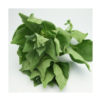 Organic, Spinach, New Zealand