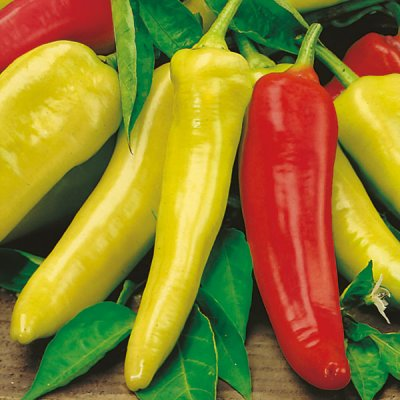 Peppers, Hot, Hungarian, Hot