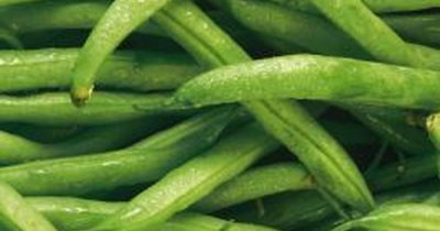 Yardlong bean, cooked, boiled, drained, without salt