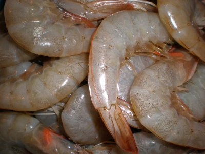 Shrimp, Raw