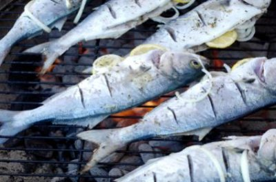 Fish, bluefish, cooked, dry heat