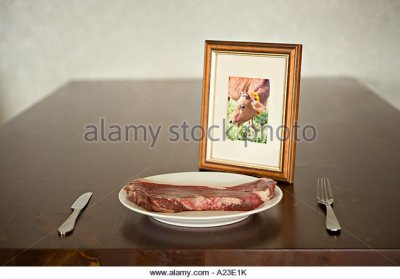 Beef, Plate Steak, Raw