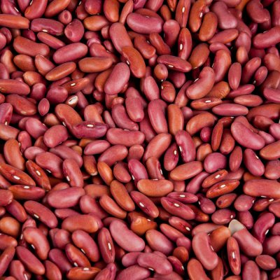 Kidney Beans, Light Red, Dried
