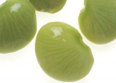 Lima beans, immature seeds, frozen, baby, cooked, boiled, drained, without salt